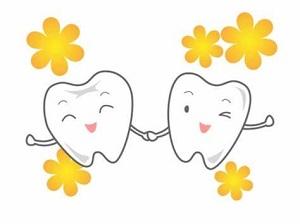 歯と花.jpg